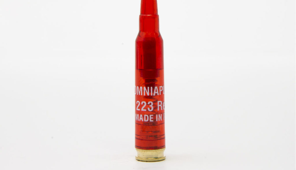 OMNI_223 REM